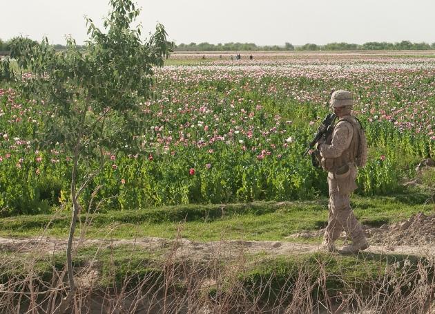 U.S. troops patrol Helmand province